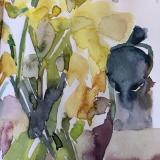 Daffodils-5-2020