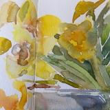 Daffodils-6-2020
