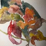 floral-still-life2020