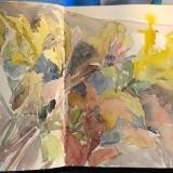 flowers-S-Blue-Hill-docks-9-21-20