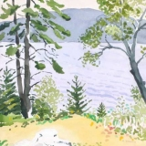 Birch-TreesGSHI