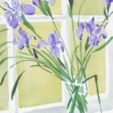Irises-in-windowGSHI